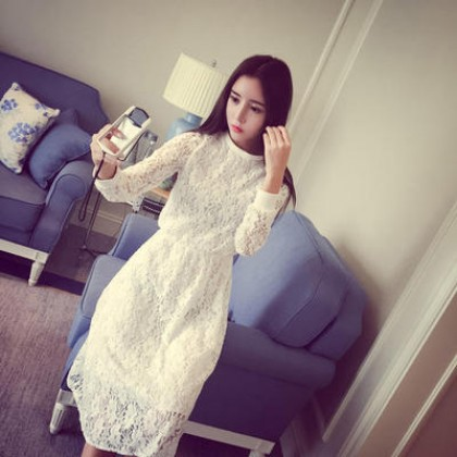Women Long Sleeves Round Neck Lace Straight Dress