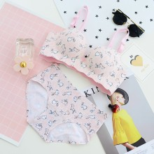 Women Cute Cartoon Bunny Print Seamless Underwear Set Fashion Lingerie Set