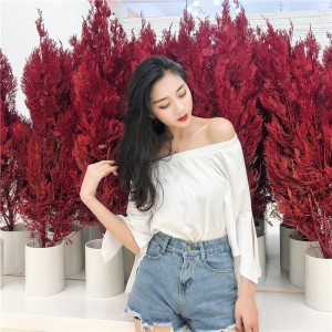 Women Korean Fashion Off Shoulder Loose Half Sleeve Top