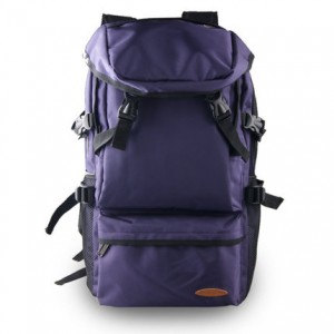 [READY STOCK] Men Water-Resistant Travel Mounting Backpack